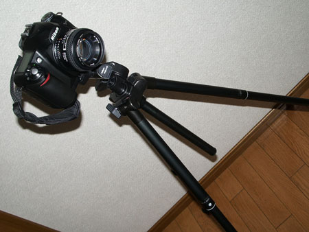2007092301.jpg